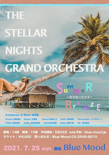 The Stellar Nights Grand Orchestra Summer Breeze